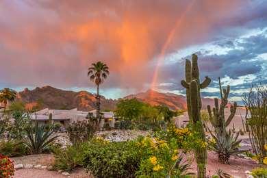 Pet Friendly Westward Look Resort in Tucson, Arizona