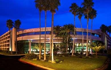 Pet Friendly Sheraton Tampa East - Brandon Hotel in Tampa, Florida