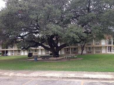 Pet Friendly Inn of Uvalde in Uvalde, Texas